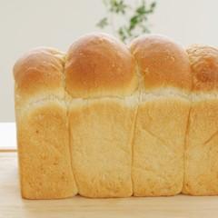 自家製レーズン酵母で食パン!国産小麦2種類で味比べ!