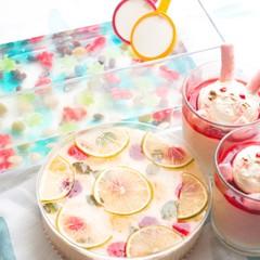 夏休み親子祭り!ドットのチーズケーキとうさぎのヴェリーヌ☆金魚すくい