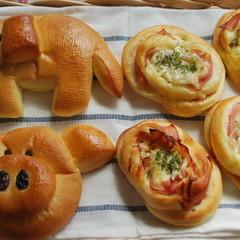 【夏休み・親子パン教室】ランチ付★可愛い動物パン&ハムのお惣菜パン♪