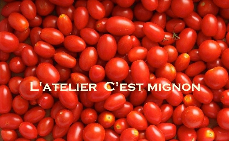 夏のトマトフェスタ!自家製ケチャップ、トマトタルトタタン他2種を楽しむ