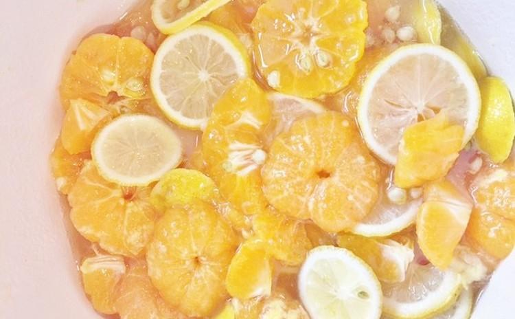 りんご、柿、冬の手作り酵素と発酵食体験