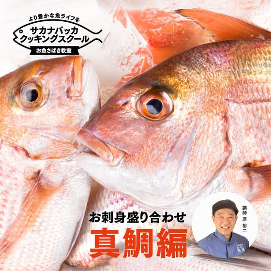 憧れの魚に挑戦!真鯛編