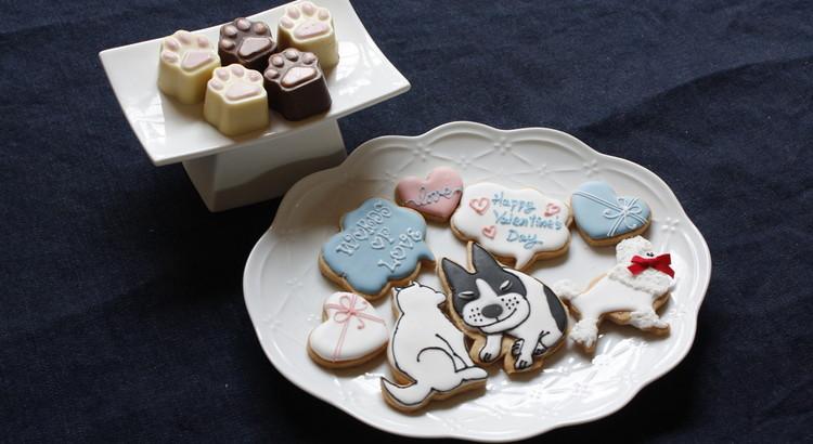 バレンタインギフトにわんこクッキー&肉球チョコはいかが?