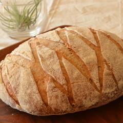 自家製ルヴァン種 パン・オ・ルヴァン こだわりランチ付き