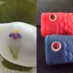 和菓子作りって簡単! 練り切りから作る「こいのぼり」と「柏もち」