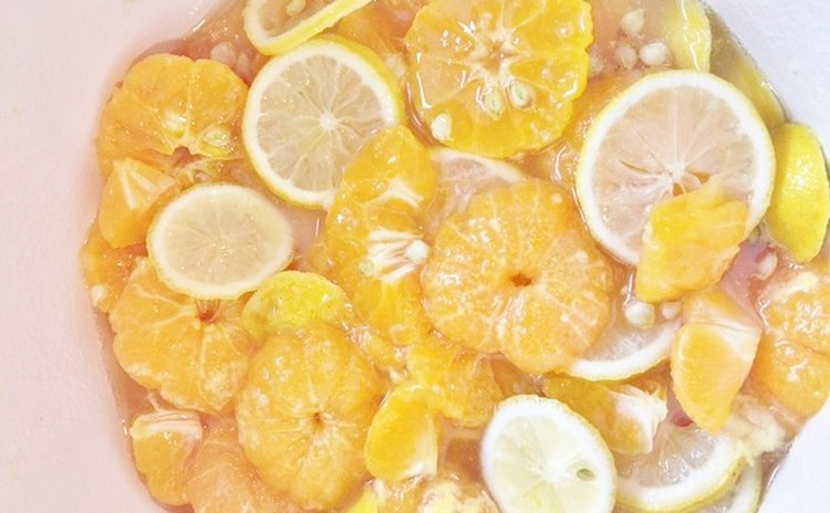 春の手作り酵素-フルーツ生春巻き作りと発酵食体験 クリナップ江戸川