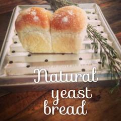 しっとりふわふわ ::: ホシノ天然酵母で作るミニ食パン