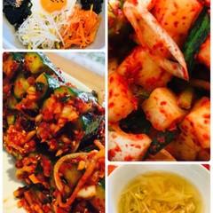 カクデギとオイソバギ(韓国料理)お土産2kg