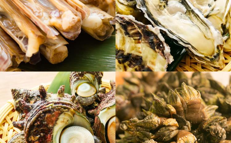 旬のものから珍しい貝まで!貝食べ比べ編