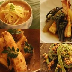 春の香りと味覚を堪能しましょう!「たけのこ料理」3品と「山菜」
