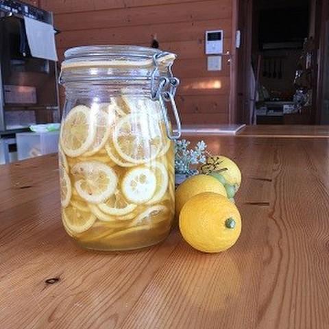 瀬戸田レモンの酵母液