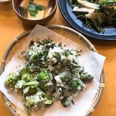 春は山菜が旬。農家の山菜はデカくて豪快。なにより美味い!