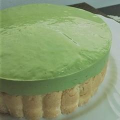 「抹茶のババロア」ホワイトチョコの2層仕立てのムースケーキ(15㎝丸)