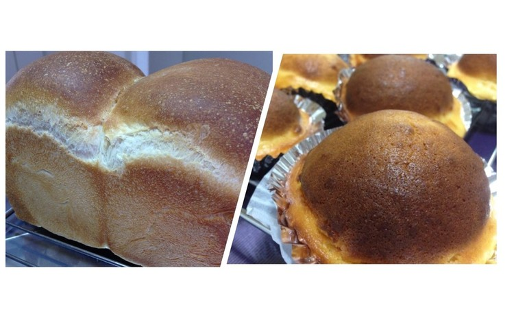 食パン・チーズケーキブレッド(イースト)