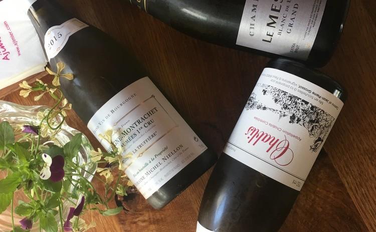 7種類のビオワインで学ぶ、デイリーワインの選び方*ラクレットランチ付