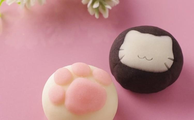 【まちゼミWS】ねこちゃん和菓子(練り切り)作り体験 高根木戸