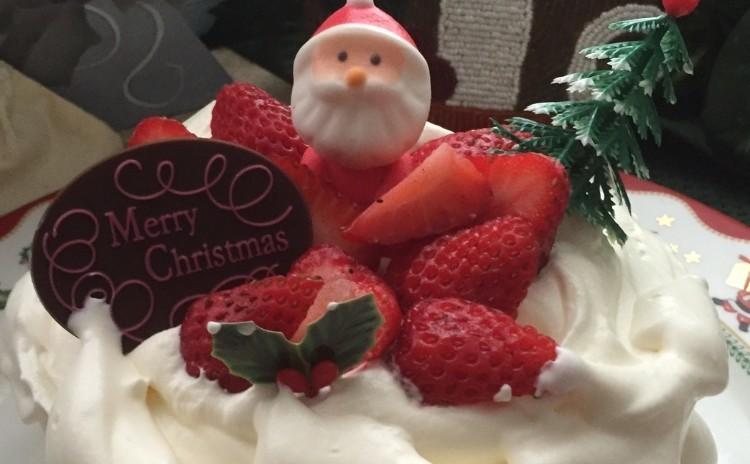 「ホワイトクリスマス」手作りケーキでクリスマス🎅(15㎝丸1台)