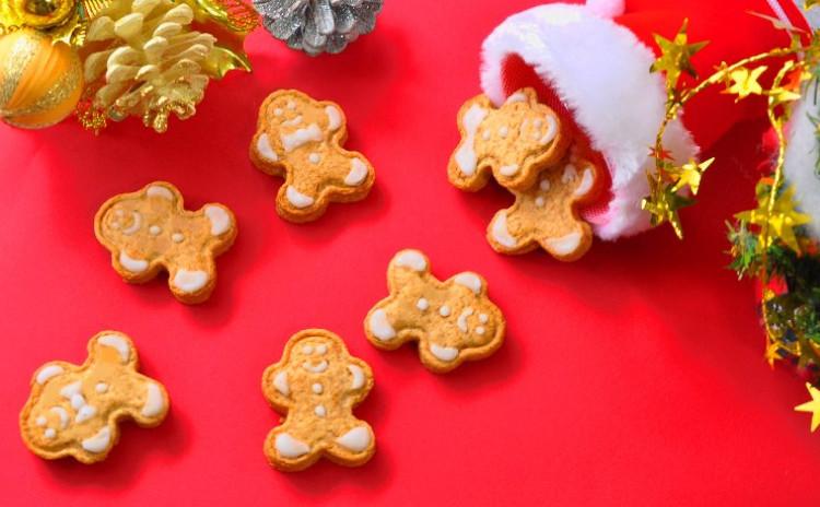クリスマスの焼き菓子~ ベリーとオレンジのクリスマスクグロフ &ジンジャーマンクッキー