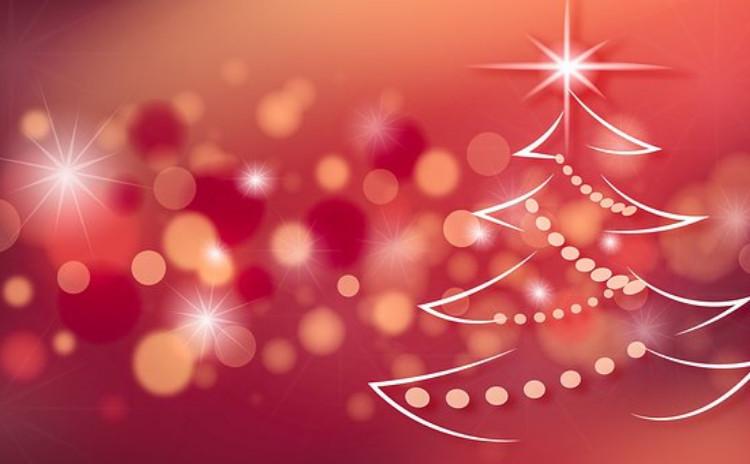 <クリスマスお持ち帰り編>牛ほほ肉の赤ワイン煮込+前菜+ケーキ