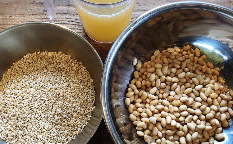 自然栽培白米麹でつくる自家製味噌