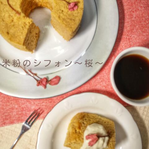 米粉のシフォンケーキ~桜~