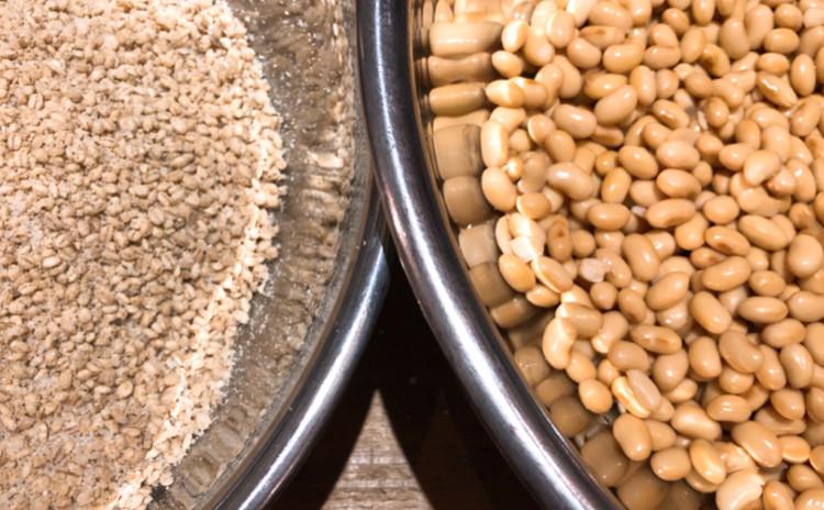 発酵講座 自然栽培白米麹味噌づくり