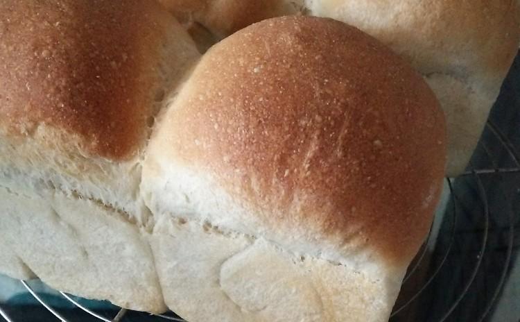 初めての天然酵母パン教室。自家製酒粕酵母で作るミニ食パン。