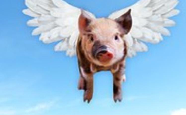 <肉ラボ!>豚肉を極める〜チャーシューお持ち帰り❌スペアリブ 豚肉の部位の違い、味の違い、焼いて、食べて、おいしく学んで、お肉名人に!