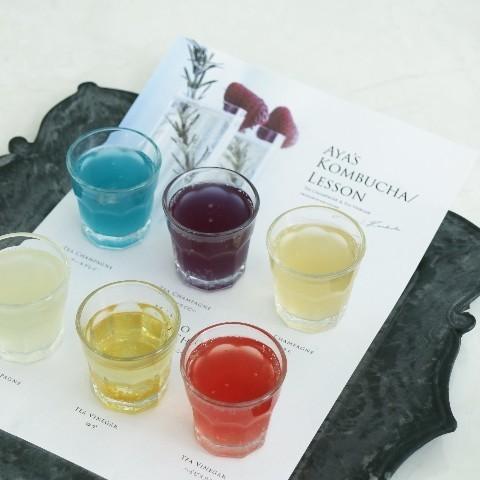 【Kombucha株分け】試飲6種類
