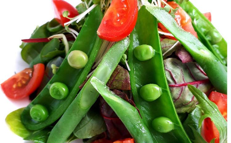 春野菜のスプリングサラダ(単品定価:6,000円)