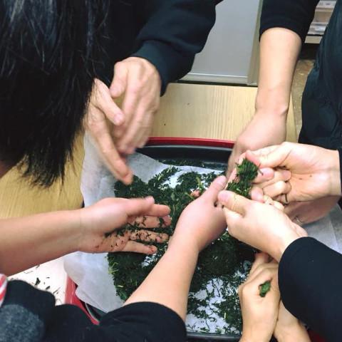 生葉から手作り緑茶作り教室