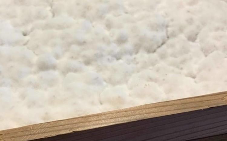 【蔵元ベーシック講座】糀屋三郎右衛門の麦味噌作り