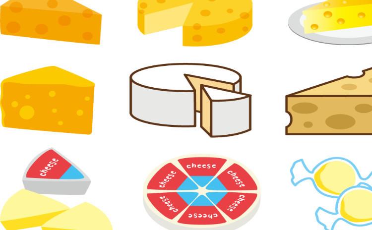 <チーズ祭り!入門編>基本のチーズを食べる❌基本のチーズ料理3品