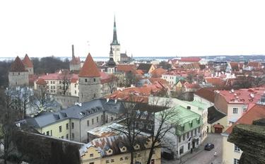 エストニア人が愛してやまない『ニセカニ』ってなに?