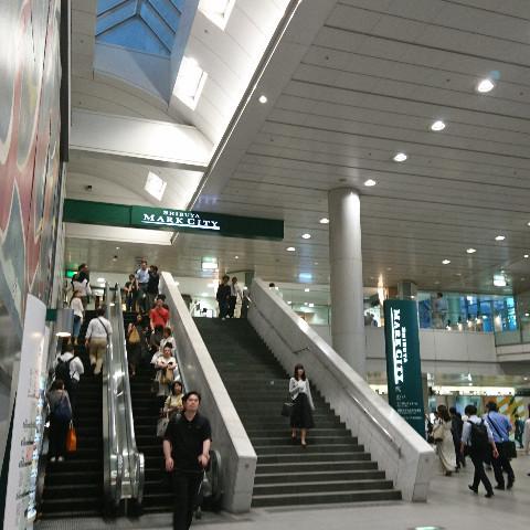 最寄りは渋谷駅各線、京王井の頭線の神泉駅