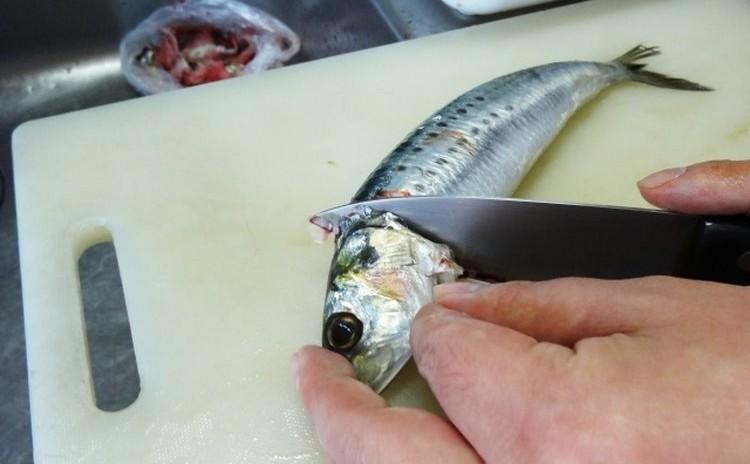 ◆魚の捌き方 入門編 イワシを3匹捌きます 手開き 三枚おろしなど