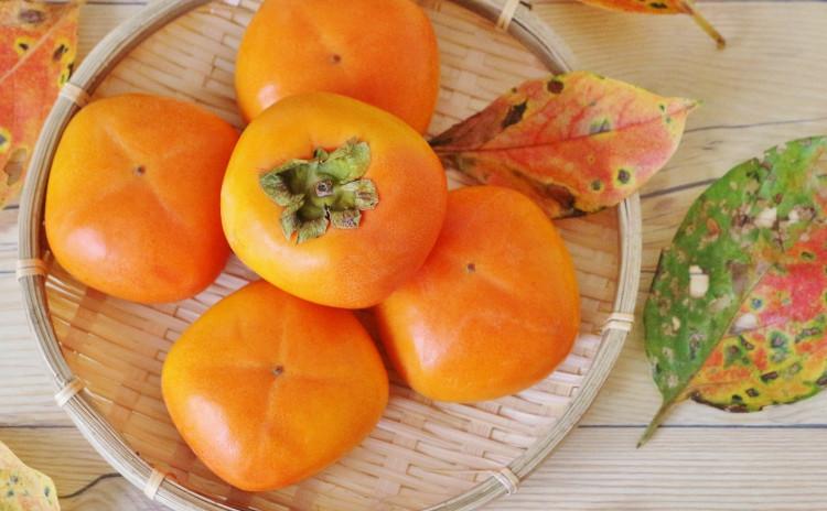 2019年柿とレモン、秋の手作り発酵ジュースと焼き柿のサラダプレート(お持ち帰り2Kgになります)
