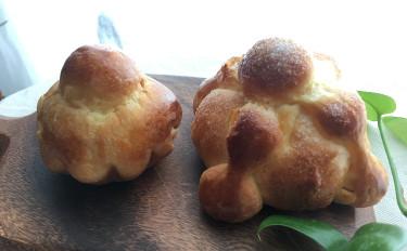★自家製酵母:干あんず酵母★死者のパン~ポン・デ・ムエルト~&ブリオッシュ