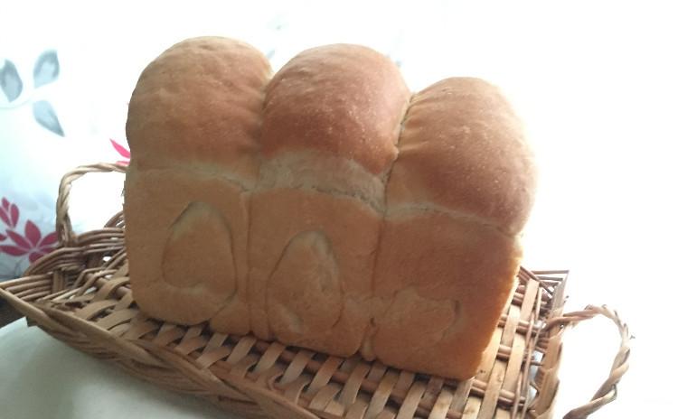 ★自家製酵母:マンゴー母★山食