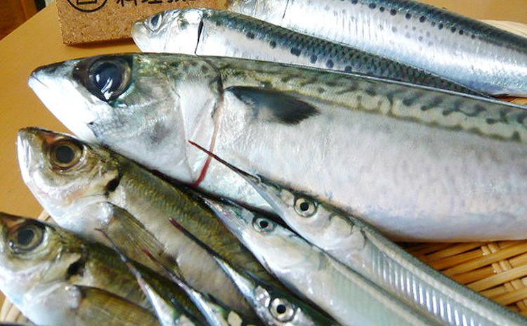 【基本講座】 鮮魚を捌く 魚毎の下処理と調理