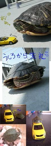 7eba7ee63651b0f5c4be09c22afc5f50?u=1056454&p=1245137389