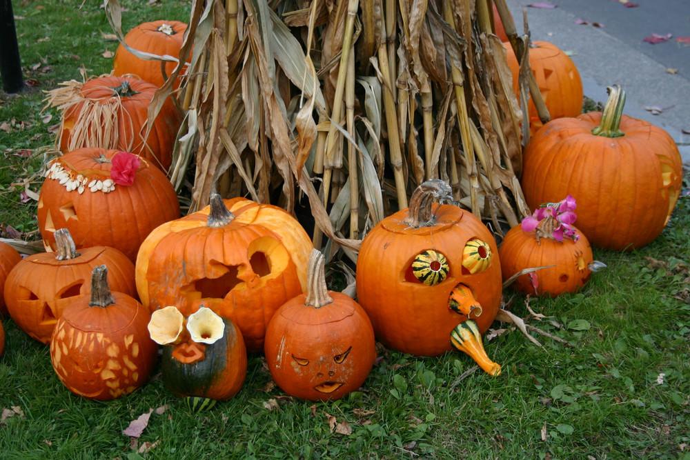 最初は「かぶ」だった?ハロウィンにかぼちゃが登場する理由とは