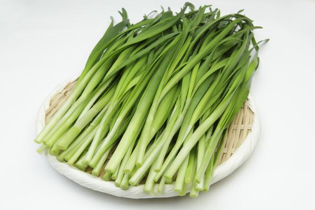 【使い切りに◎】旬の「ニラ」を使ったご飯がすすむおかず5選