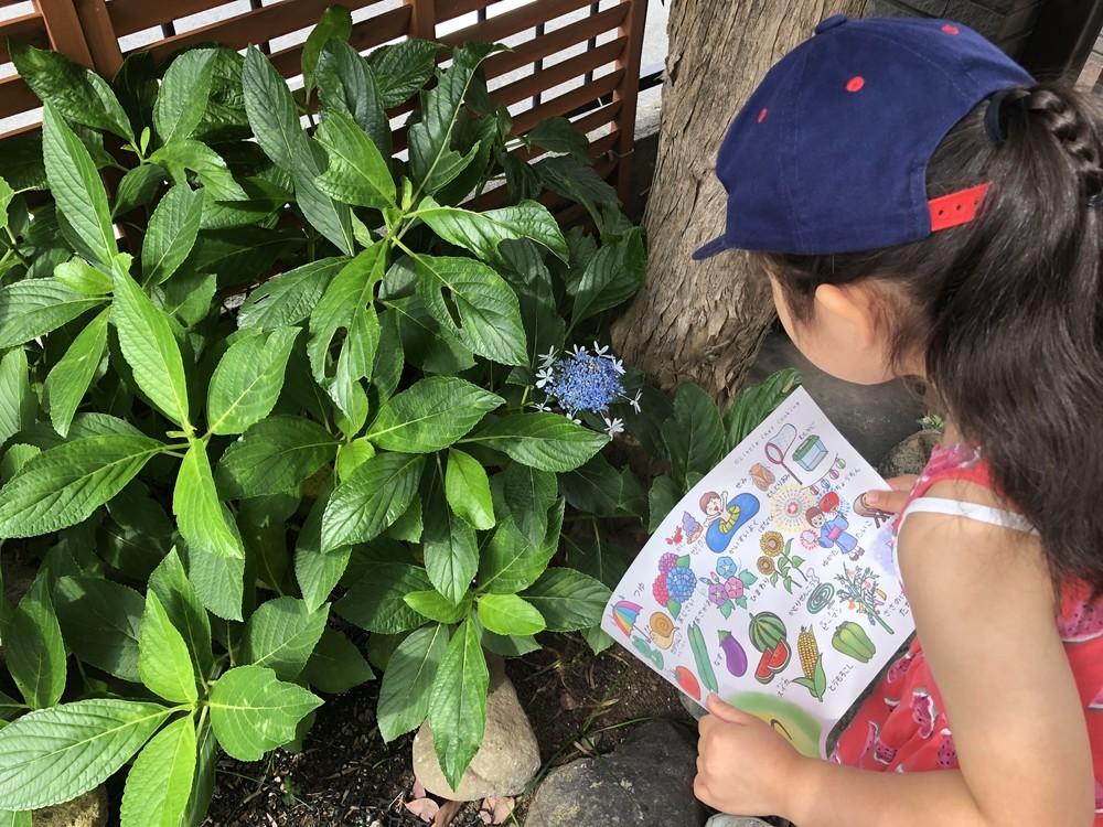 子どもが「夏の旬食材」をするする覚えちゃう!お買い物ついでにできる学びのコツ【今日から始める親子クッキング vol.9】