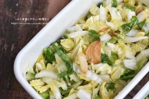 サラダから煮物まで!旬の「白菜」が主役の作りおきレシピ
