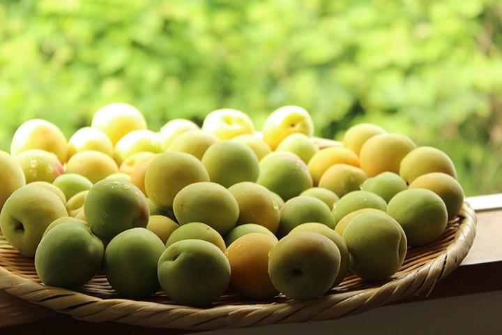 【心理テスト】6月は梅の季節♪作りたい料理でわかる「心の健康度」