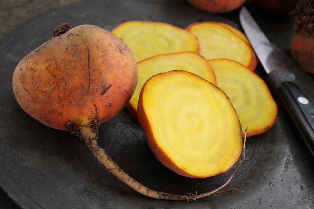 いつもの野菜と置き換えるだけ!ビーツやフィレンツェナスなど「西洋野菜」のおいしいレシピ