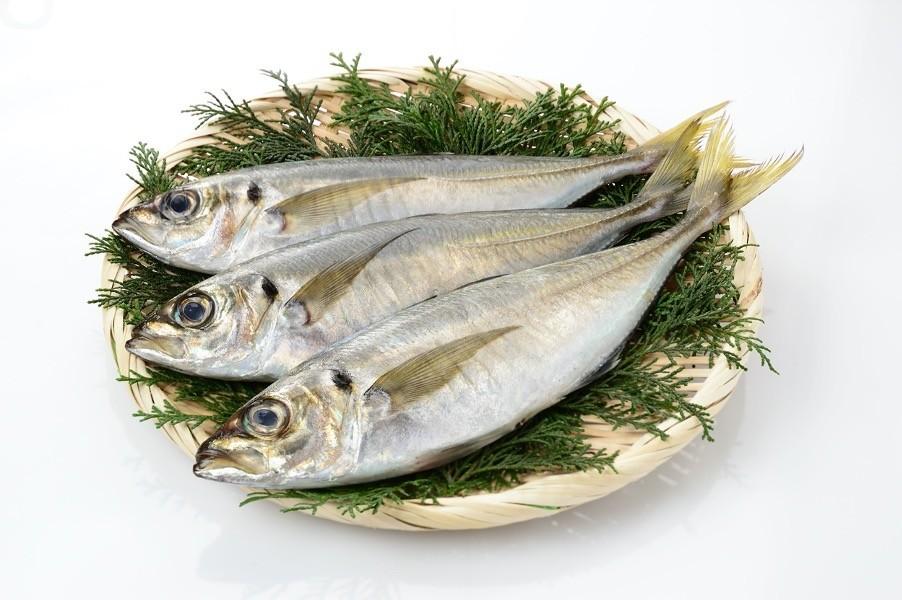 【刺身やすし類なども注意!】身近な生魚や魚介類に潜む「腸炎ビブリオ食中毒」の予防法