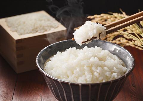 美味しく お 米 炊く 方法 を