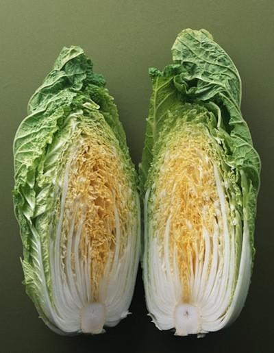 年末年始のいろいろデトックスには、冬においしい白菜が一番!!